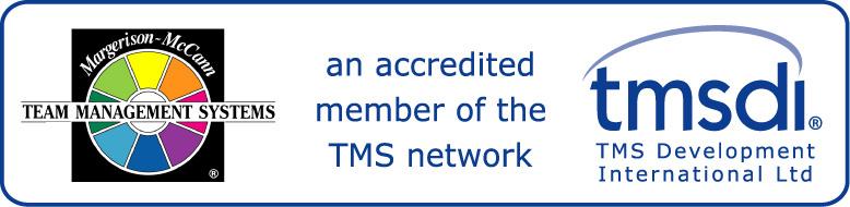 Zertifizierter Trainer für das Team Management System